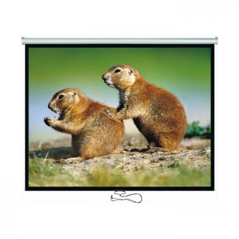 BRATECK Οθόνη Προβολής με Τρίποδα 2x1.5 4:3 PSDC100