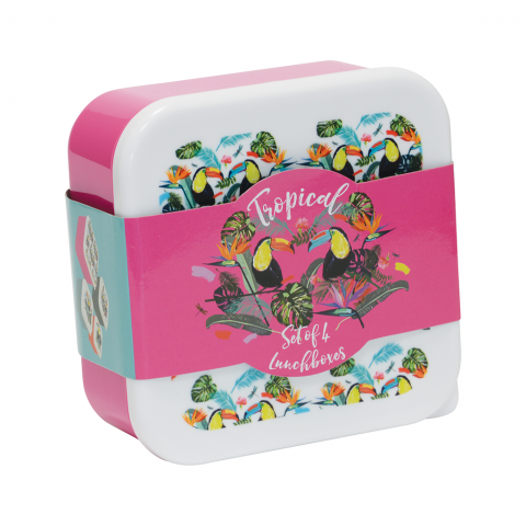 FIZZ Tropical Lunch Boxes 1342