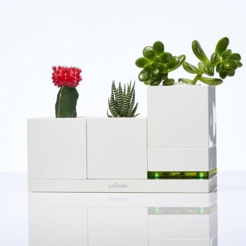 Allocacoc® LeGrow TG-P3 |Family Green| Έξυπνα γλαστράκια - φορτιστής Quick Charge 3.0